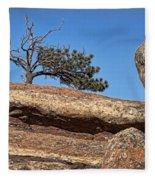 Rocky Tree Fleece Blanket