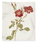 Rose Bourbon Fleece Blanket