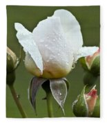 Rose Flower Series 5 Fleece Blanket
