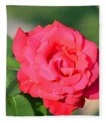 Rose In The Morninglight Fleece Blanket