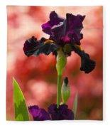 Royal Purple Tall Bearded Iris With Peachy Azalea Background Fleece Blanket