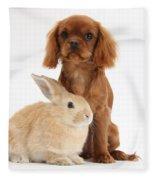 Ruby Cavalier King Charles Spaniel Pup Fleece Blanket