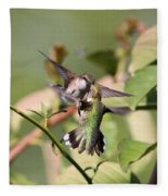 Ruby-throated Hummingbird - An Altercation Fleece Blanket