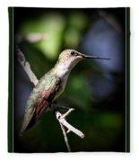 Ruby-throated Hummingbird - Just Beautiful Fleece Blanket