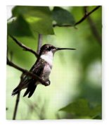 Ruby-throated Hummingbird - Shade Fleece Blanket