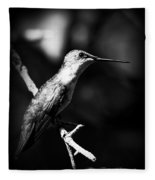 Ruby-throated Hummingbird - Signature Fleece Blanket