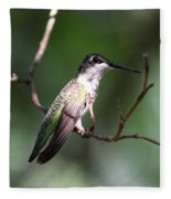 Ruby-throated Hummingbird - Hanging Low Fleece Blanket