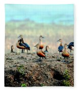 Ruddy Shelducks Fleece Blanket