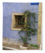 Rue De La Liberte Fleece Blanket