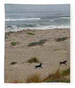 Run My Dogs Fleece Blanket