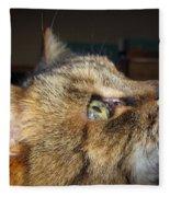Runcius- The King Kitty Fleece Blanket