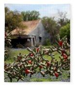 Rustic Cactus Abandoned Barn Fleece Blanket