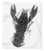 Rusty Crayfish Fleece Blanket