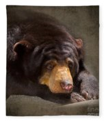 Sad Sun Bear Fleece Blanket