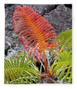 Sadleria Fern Hawaii Fleece Blanket