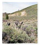 Sage And Pasture Fleece Blanket