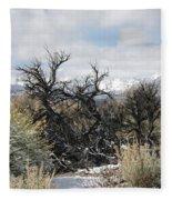 Sagebrush And Snow Fleece Blanket
