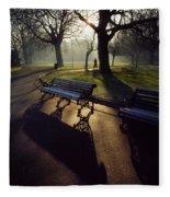 Saint Stephens Green, Dublin, Co Fleece Blanket