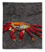 Sally Lightfoot Crab Fleece Blanket