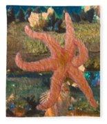 Sally Starfish Fleece Blanket
