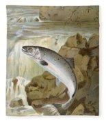 Salmon, C1900 Fleece Blanket