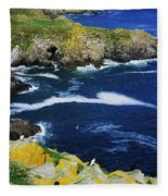 Saltee Islands, Co Wexford, Ireland Fleece Blanket