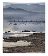 Salton Sea Birds Fleece Blanket