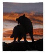 Samoyed At Sunset Fleece Blanket