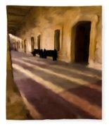 San Cristobal Shadows Fleece Blanket