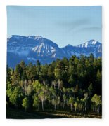 San Juans Colorado Fleece Blanket