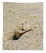 Sand Crab Digging His Hole Fleece Blanket