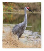 Sandhill Crane Beauty By The Pond Fleece Blanket