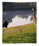 Sandhill Crane Family Fun Fleece Blanket
