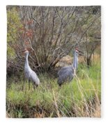 Sandhill Cranes In Colorful Marsh Fleece Blanket