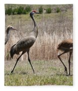 Sandhill Parade Fleece Blanket