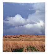 Sandhill Skies Fleece Blanket