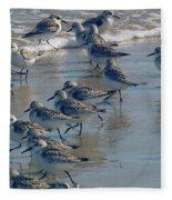 Sanderlings Fleece Blanket