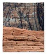 Sandstone Ballet Fleece Blanket