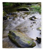Satus Creek In Autumn Fleece Blanket