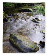 Satus Creek In Autumn Fleece Blanket