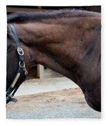 Sc-045-12 Fleece Blanket
