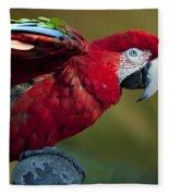 Scarlet Macaw Fleece Blanket