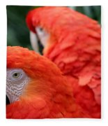 Scarlet Macaws Fleece Blanket