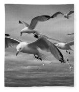 Sea Gull Scavengers Fleece Blanket