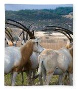 Scimitar-horned Oryx Fleece Blanket