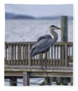 Scruffy Heron Fleece Blanket