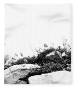 Sea Campion Wall Fleece Blanket