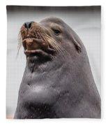 Sea Lion Satisfaction Fleece Blanket