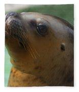 Sea Lion Up Close. Fleece Blanket