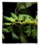 Seadragon Fleece Blanket